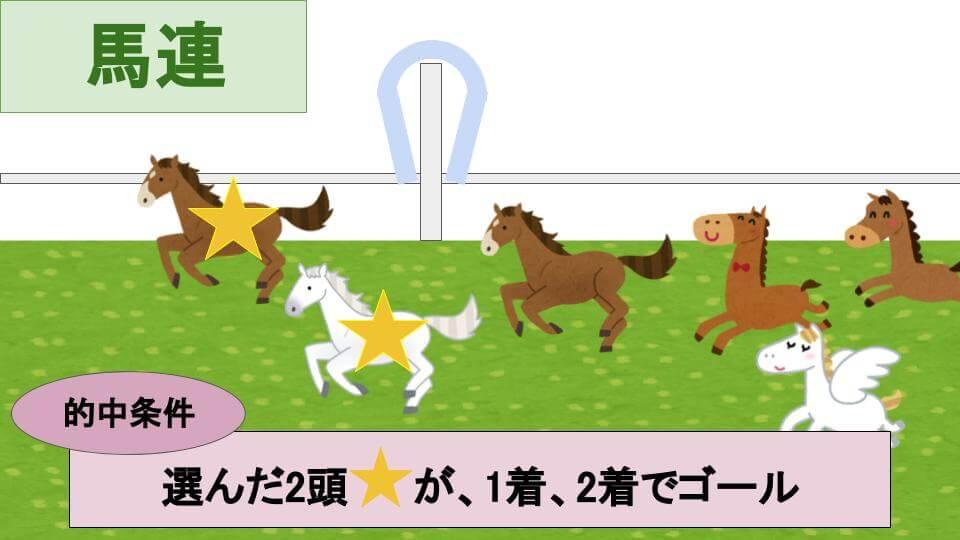 馬連馬券とは?的中条件の説明画像