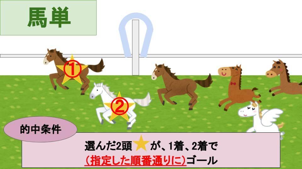 馬単馬券とは?的中条件の説明画像
