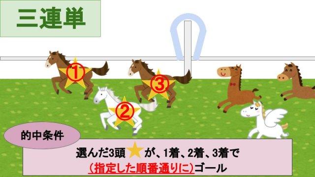 三連単馬券とは?的中条件の説明画像