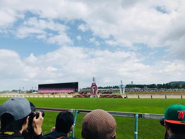 コースのすぐ近くで競馬を観戦するのがおすすめ