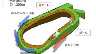 中京競馬場 芝1200mのコースで特徴を解説
