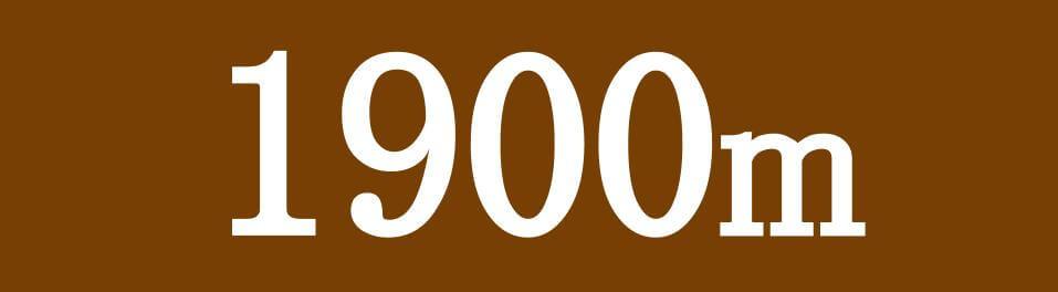 各競馬場 ダート1900mのコース特徴へのリンク画像