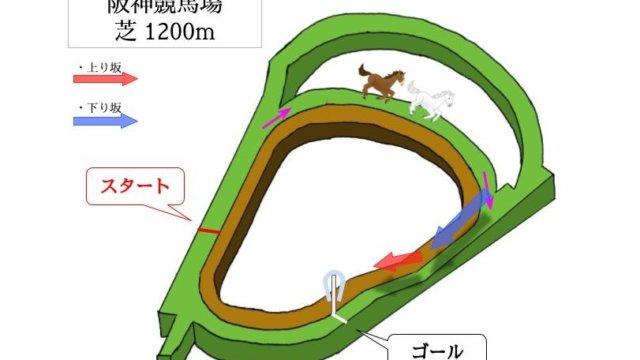 阪神競馬場 芝1200mのコースで特徴を解説