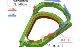 阪神競馬場 芝2400mのコースで特徴を解説