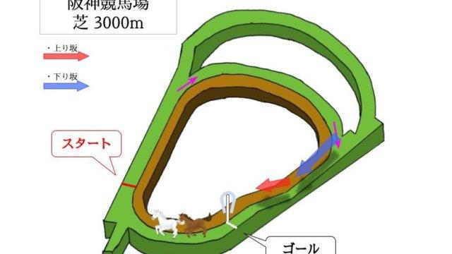阪神競馬場 芝3000mのコースで特徴を解説