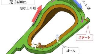 京都競馬場 芝2400mのコースで特徴を解説