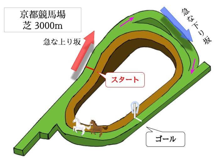 京都競馬場 芝3000mのコースで特徴を解説