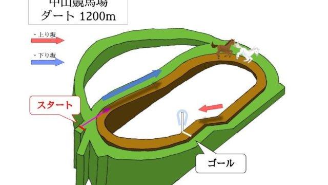 中山競馬場 ダート1200mのコースで特徴を解説