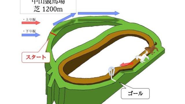 中山競馬場 芝1200mのコースで特徴を解説