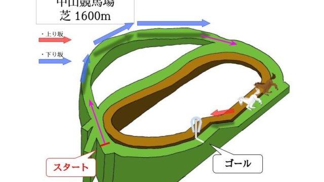 中山競馬場 芝1600mのコースで特徴を解説