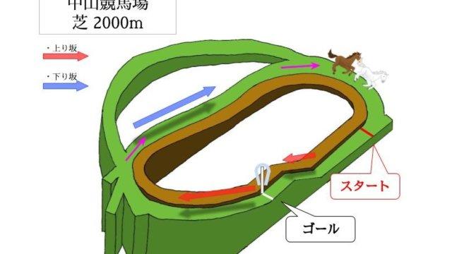 中山競馬場 芝2000mのコースで特徴を解説