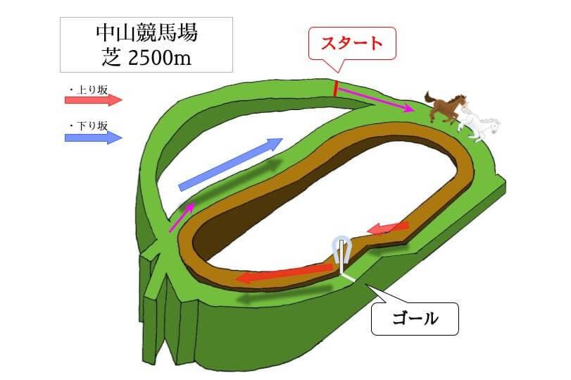 中山競馬場 芝2500mのコースで特徴を解説