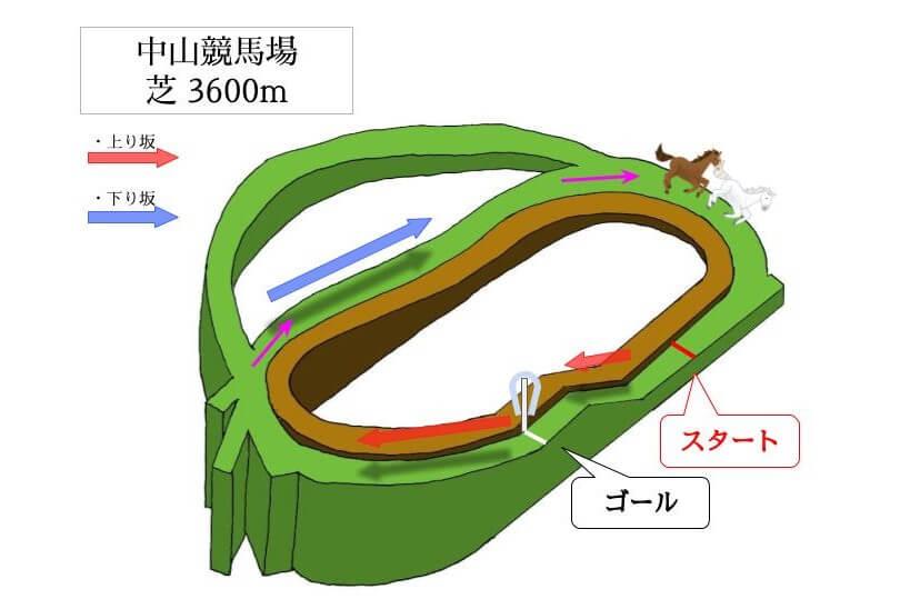 中山競馬場 芝3600mのコースで特徴を解説