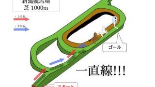 新潟競馬場 芝1000mのコースで特徴を解説