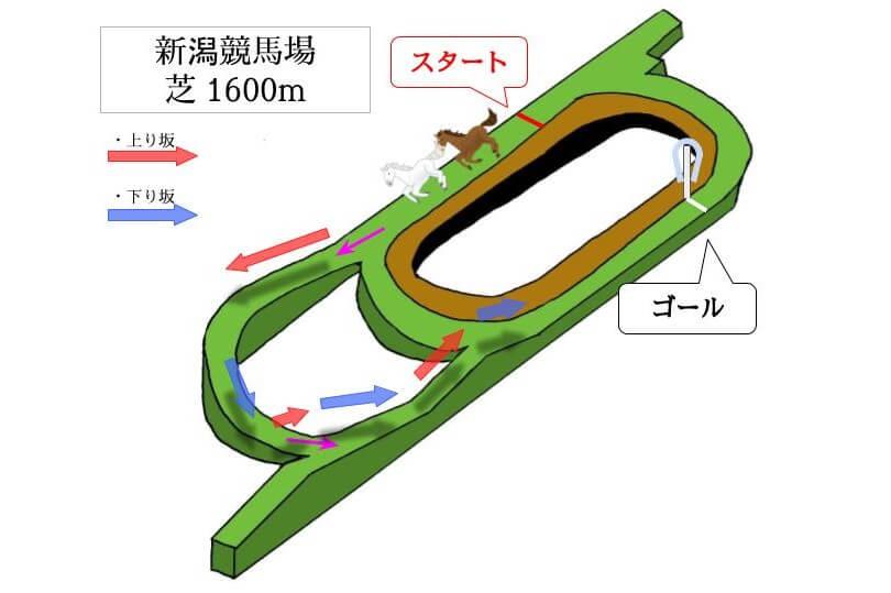 新潟競馬場 芝1600mのコースで特徴を解説