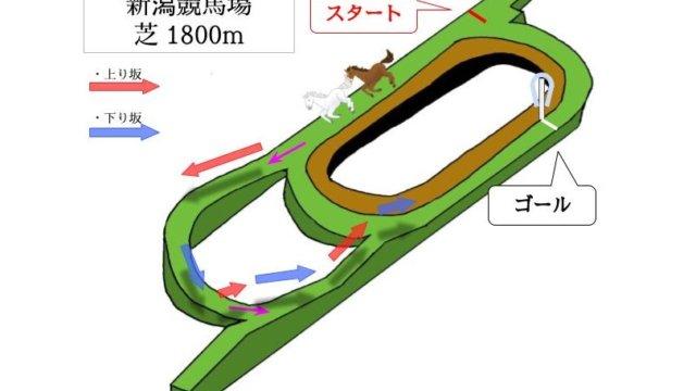 新潟競馬場 芝1800mのコースで特徴を解説