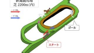 新潟競馬場 芝2200m(内)のコースで特徴を解説