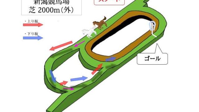 新潟競馬場 芝2000m(外)のコースで特徴を解説