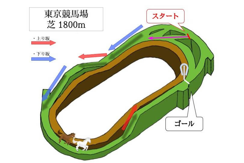 東京競馬場 芝1800mのコースで特徴を解説