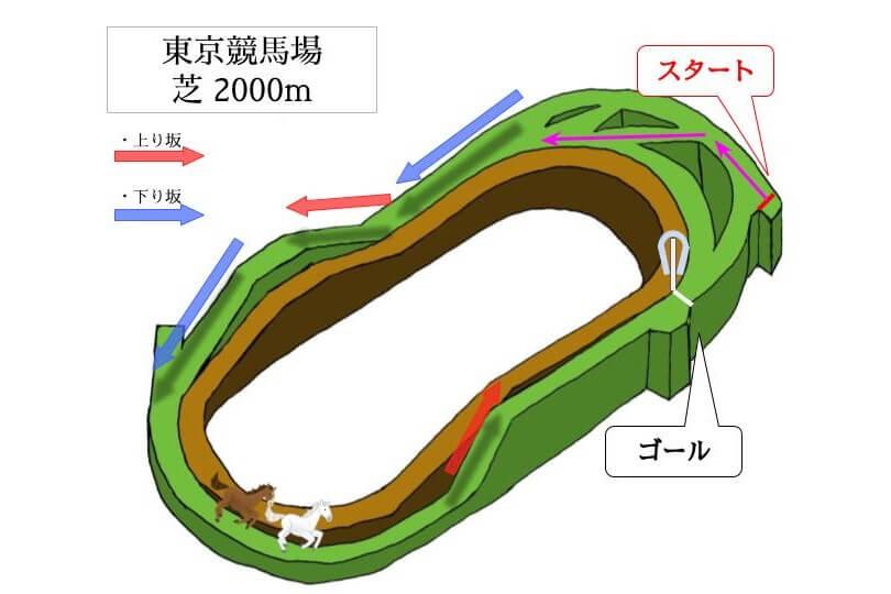東京競馬場 芝2000mのコースで特徴を解説
