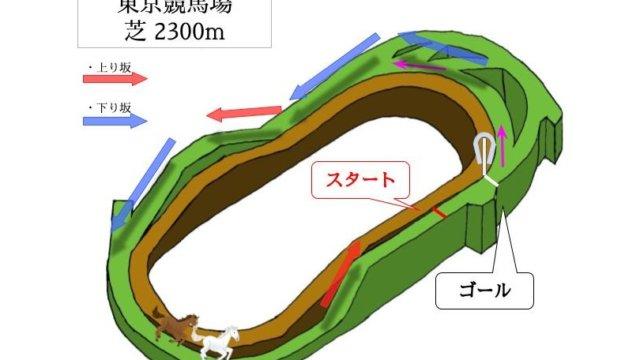 東京競馬場 芝2300mのコースで特徴を解説