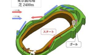 東京競馬場 芝2400mのコースで特徴を解説