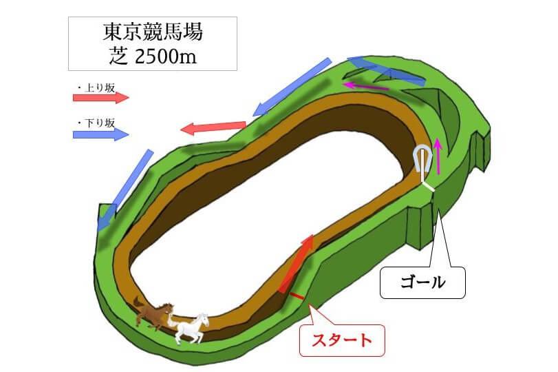 東京競馬場 芝2500mのコースで特徴を解説