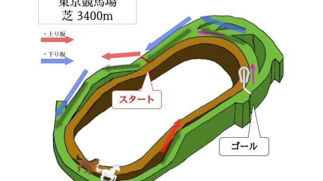 東京競馬場 芝3400mのコースで特徴を解説
