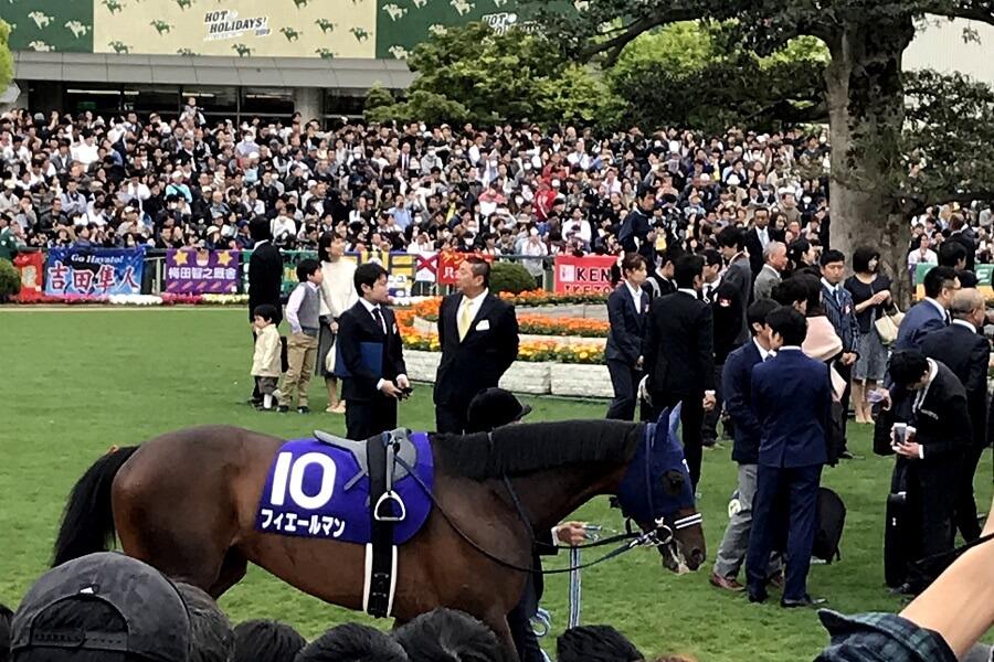 京都競馬場のパドックを歩く馬(フィエールマン)