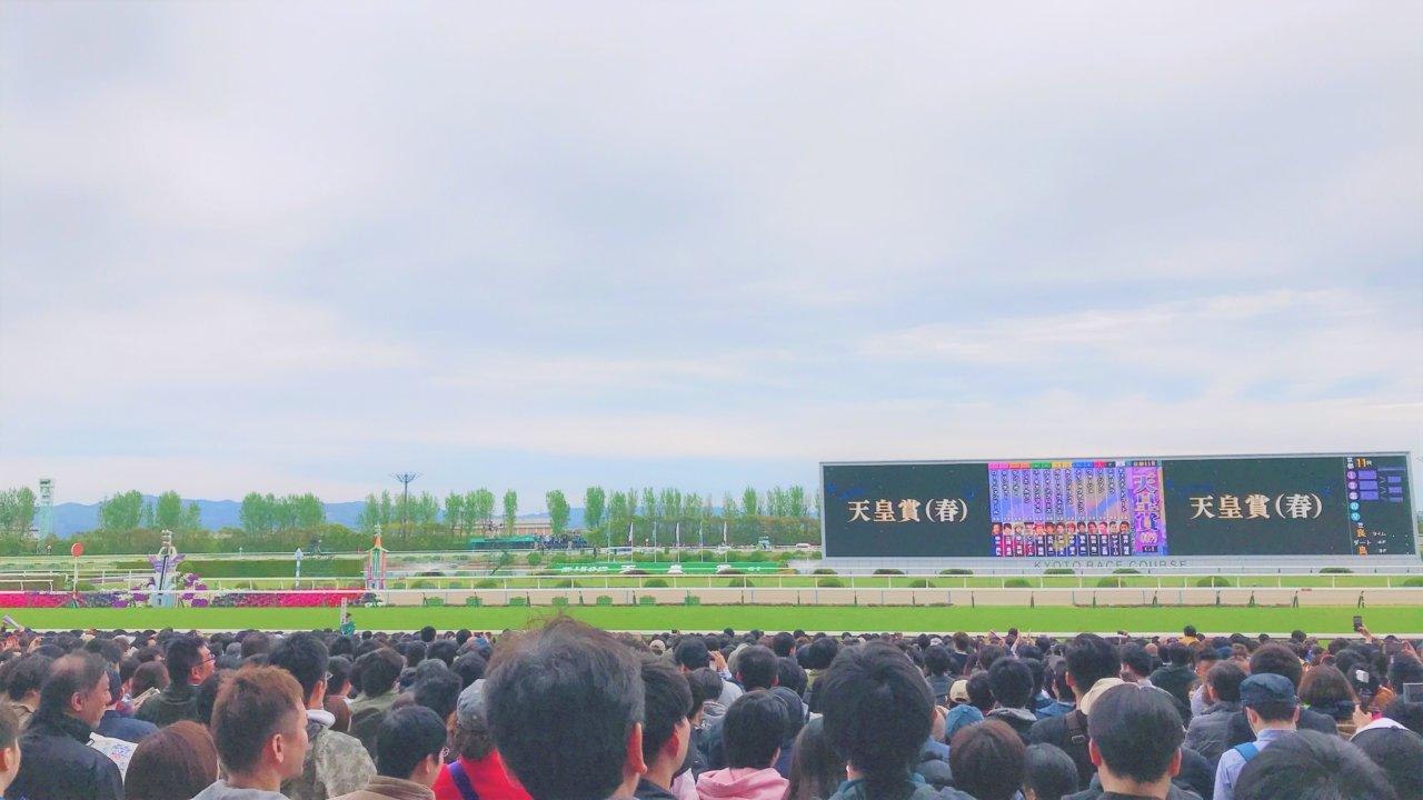 京都競馬場の芝コース