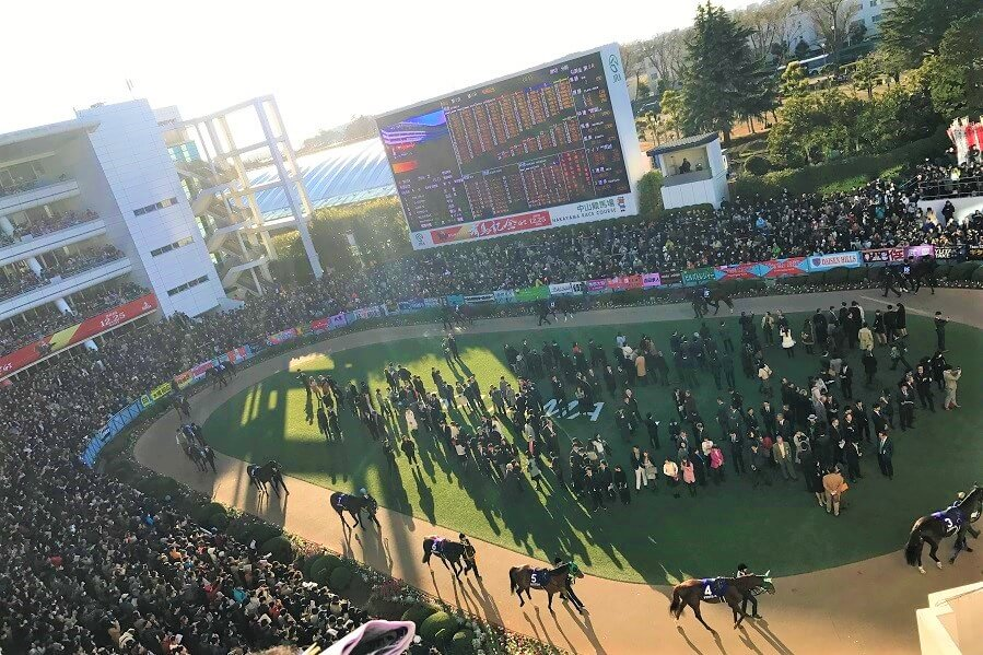 パドックに集まるたくさんの競馬ファン