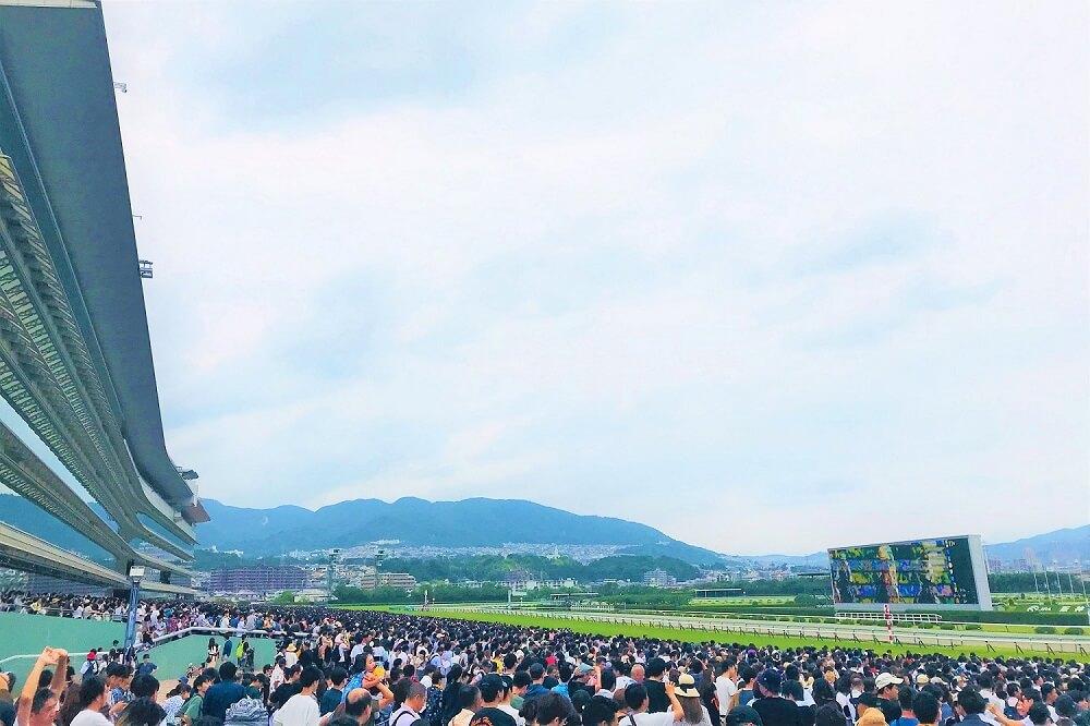阪神競馬場のコース