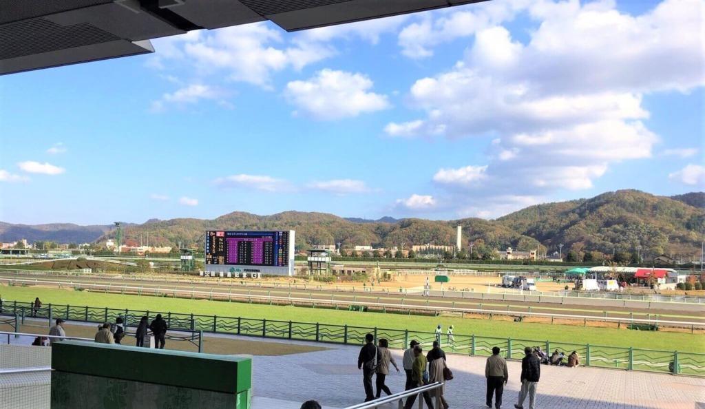 福島競馬場のコースと楽しむ競馬ファン