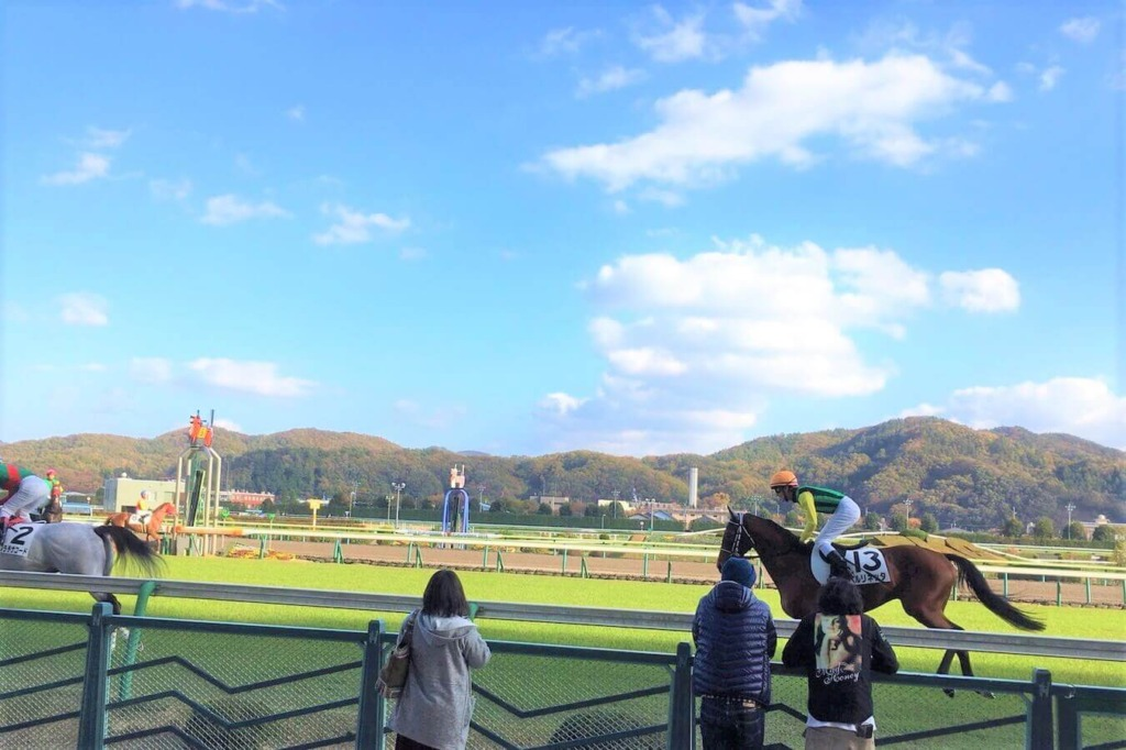 福島競馬場のコースを走る馬たち