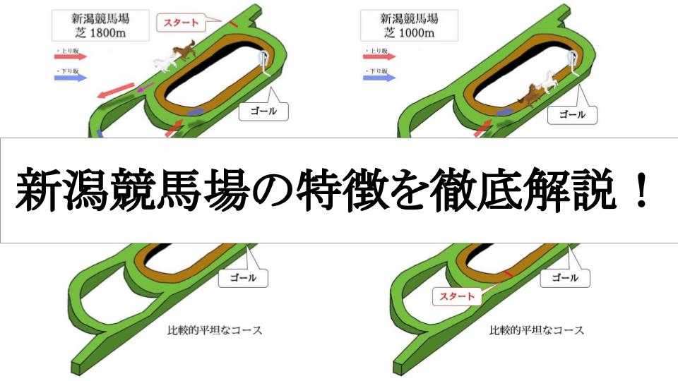 新潟競馬場の特徴を徹底解説!