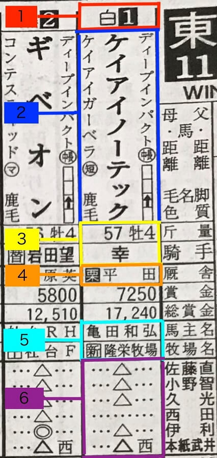 競馬新聞の出走馬情報の見方/読み方