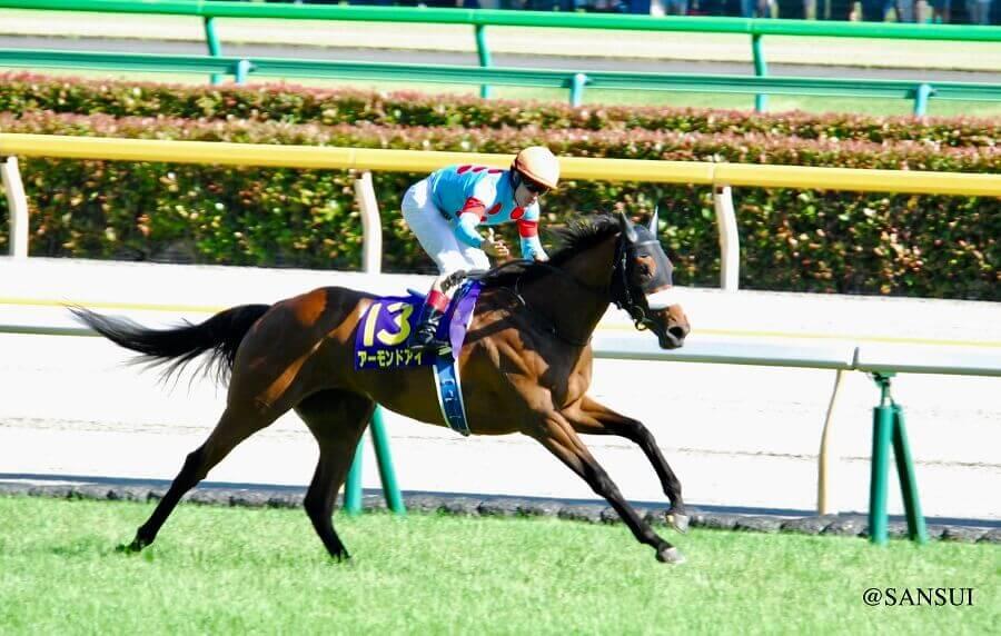中央競馬の代表馬:アーモンドアイ