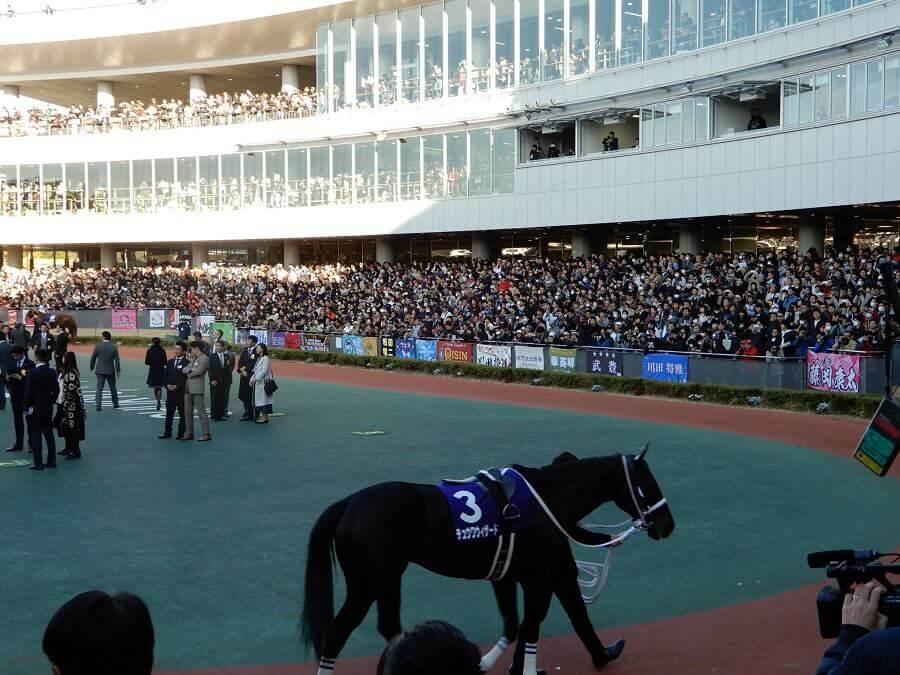 中京競馬場のチャンピオンズカップのパドック