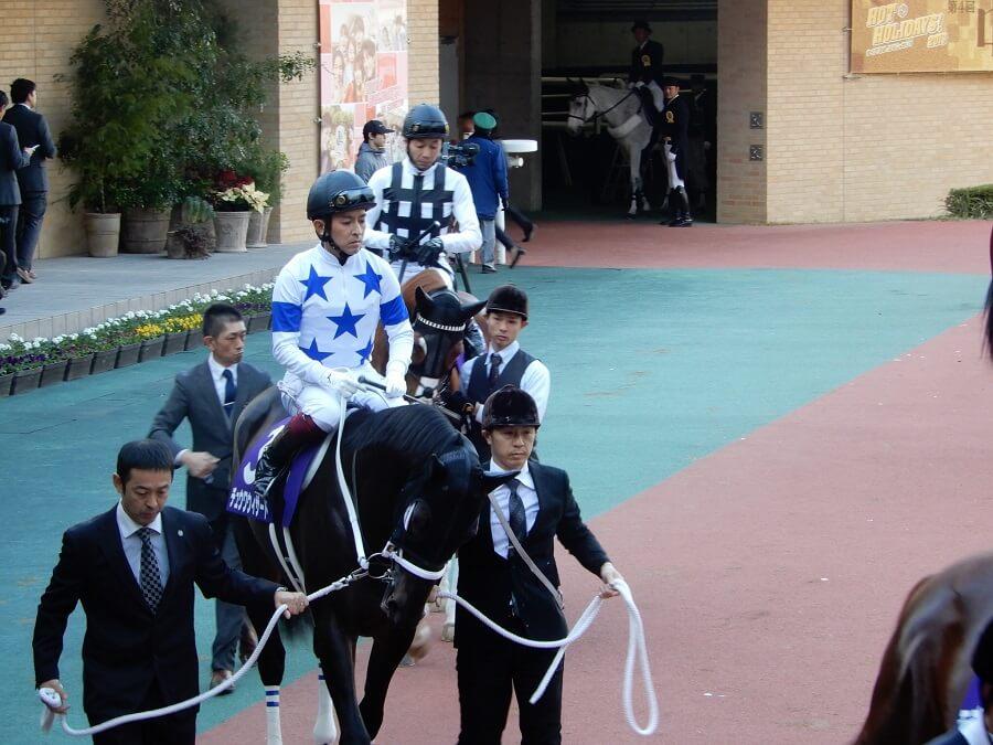 中京競馬場のチャンピオンズカップ時の出走馬たち