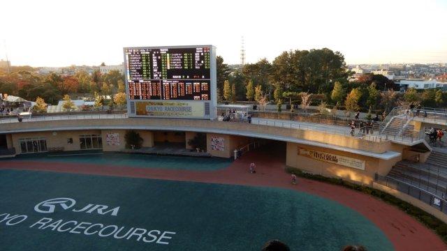中京競馬場のパドックの画像